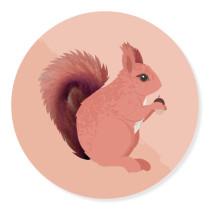 Sticker Eekhoorn 10 stuks (TK)