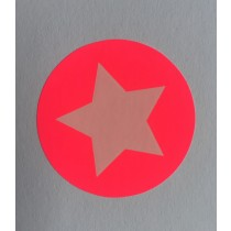 Sticker Neon Roze ster 10 stuks