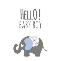 Label olifant hello baby boy