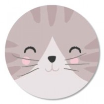 Sticker Poes gezichtje 10 stuks (TK)